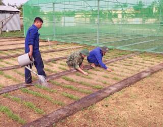 Đại đội Kho tăng gia sản xuất, nâng cao đời sống chiến sĩ
