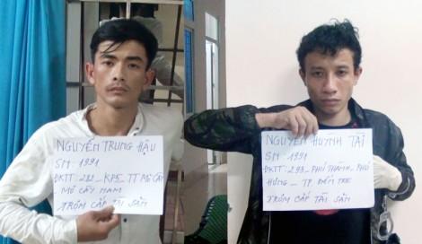 Lực lượng Cảnh sát 113 bắt giữ đối tượng trộm cắp tài sản