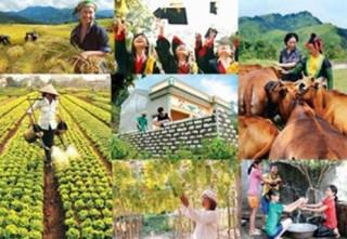 Tiêu chí xác định xã, thôn hoàn thành mục tiêu Chương trình 135