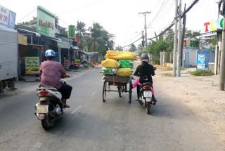 An toàn giao thông, vui xuân trọn vẹn