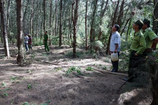 Kiểm tra công tác phòng cháy chữa cháy rừng tại Thạnh Phú