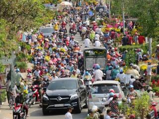Hoa kiểng Hội chợ Xuân 2019 sức tiêu thụ mạnh