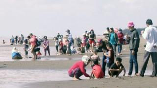 Biển Cồn Bửng thu hút khách dịp Tết Nguyên đán Kỷ Hợi 2019