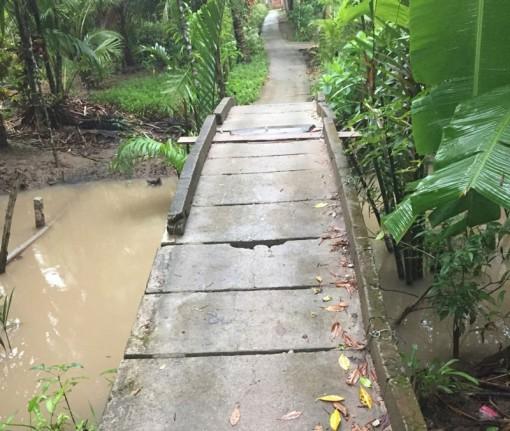 Hỗ trợ xã Bình Khánh Tây xây dựng giao thông nông thôn