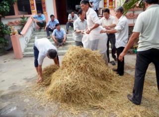 Tập huấn chế biến thức ăn cho bò