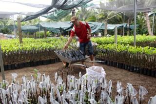 Xã Vĩnh Thành: Phát huy thế mạnh làng nghề trong xây dựng nông thôn mới