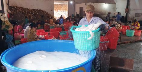Thạnh Phú thành lập mới gần 140 doanh nghiệp
