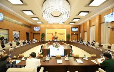 Điều động, phê chuẩn nhân sự Hội đồng Dân tộc và Ủy ban Tư pháp