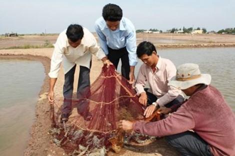 Phát huy tiềm năng nuôi trồng thủy sản