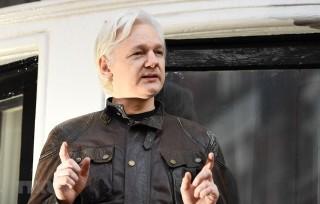 Anh phạt tù 50 tuần đối với nhà sáng lập trang mạng WikiLeaks