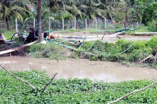 Cần xử lý nghiêm việc bơm cát bùn gây ô nhiễm môi trường