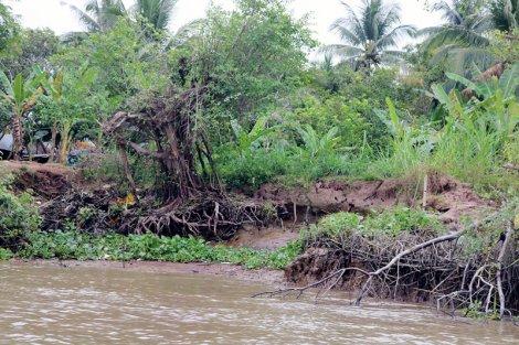 Thống nhất phương án đầu tư các dự án bảo vệ bờ biển, bờ sông