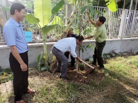 Phát động Tết trồng cây đời đời nhớ ơn Bác