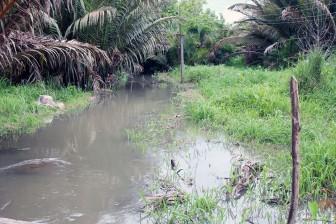 Khẩn trương khắc phục ô nhiễm môi trường do bơm cát bùn tại xã Sơn Đông