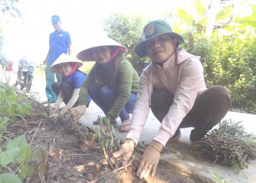 Thạnh Phú trồng hơn 300 cây xanh bảo vệ môi trường