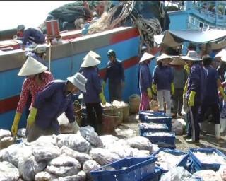 Bình Đại nâng cao giá trị sản xuất thủy sản
