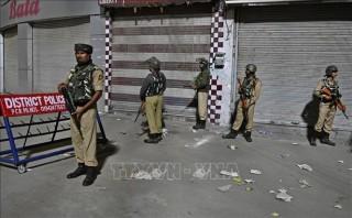 Mỹ, Anh kêu gọi Ấn Độ và Pakistan kiềm chế trong vấn đề Kashmir