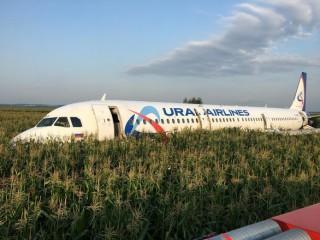 Máy bay Nga hạ cánh khẩn cấp do chim bay vào động cơ: 23 người bị thương