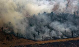 Brazil sử dụng máy bay chiến đấu để chữa cháy rừng Amazon