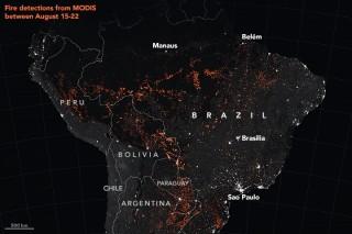 Cháy rừng Amazon: Những con số biết nói