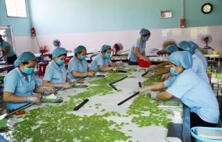 Gần 23 ngàn tỷ đồng giá trị sản xuất công nghiệp - tiểu thủ công nghiệp