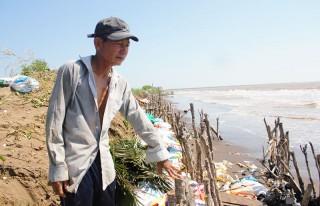 Khẩn cấp ứng phó sạt lở bờ biển tại tỉnh