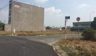 HĐND tỉnh khảo sát chuyển đổi mục đích sử dụng đất tại huyện Ba Tri và Bình Đại