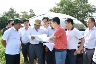 Giám sát việc thực hiện các dự án sử dụng vốn đầu tư công