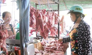 Kiểm tra kinh doanh gia súc, gia cầm trên địa bàn TP. Bến Tre