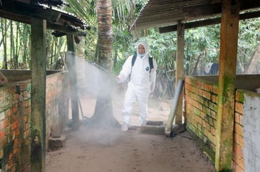 Tiếp tục theo dõi phòng chống dịch tả heo châu Phi