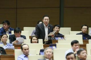 Đại biểu Quốc hội đơn vị tỉnh thảo luận dự án luật