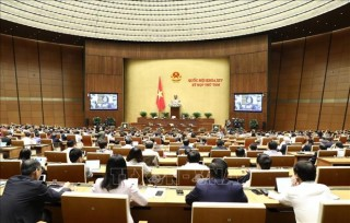 Ngày 21-11-2019, Quốc hội thảo luận hai dự án Luật