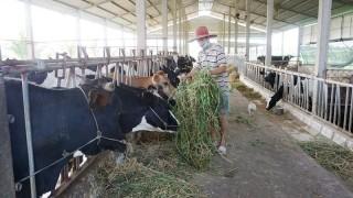 An Phú Trung xây dựng thành công xã nông thôn mới
