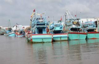 Không sử dụng tàu cá vận chuyển khách du lịch
