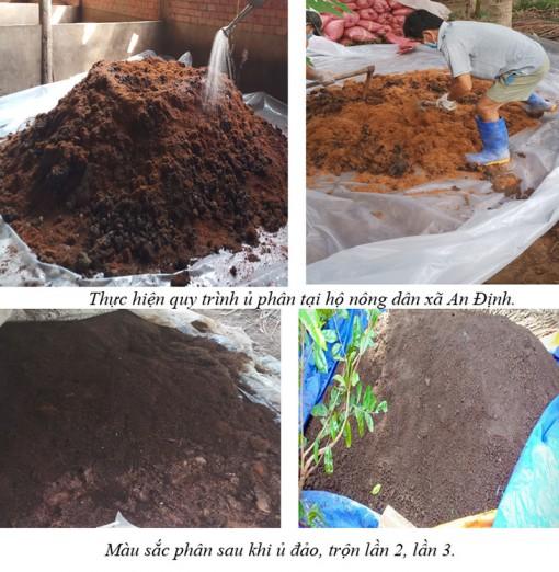 Mỏ Cày Nam: Thực hiện dự án sản xuất phân hữu cơ vi sinh từ chất thải chăn nuôi heo