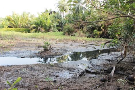 Cần sớm giải quyết ô nhiễm môi trường tại ấp Bình Công, xã Bình Phú