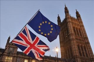 EU củng cố lập trường để đàm phán thỏa thuận mới với Anh