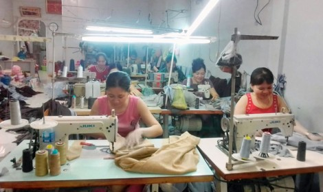 Phụ nữ phát triển kinh tế từ vốn vay tín dụng