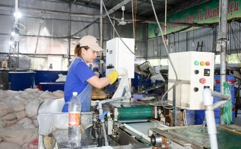 Hoạt động sản xuất ngành dừa đang gặp khó