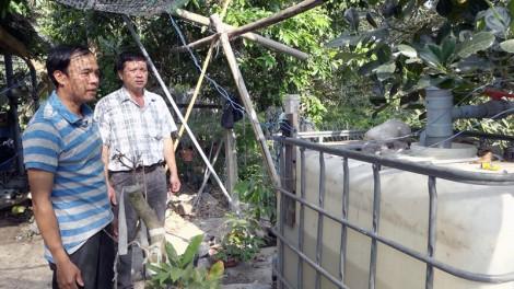 Tưới nước, phun thuốc tự động trên cây sầu riêng