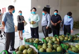 Đoàn doanh nghiệp Singapore tìm hiểu cơ hội đầu tư tại tỉnh