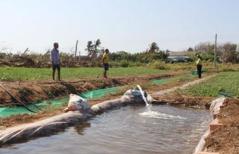 Nông dân Thừa Đức khai thác sử dụng hiệu quả nguồn nước ngọt trong sản xuất