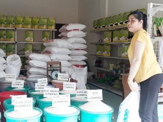 Đảm bảo cung ứng hàng hóa trong thời gian phòng chống dịch bệnh Covid-19