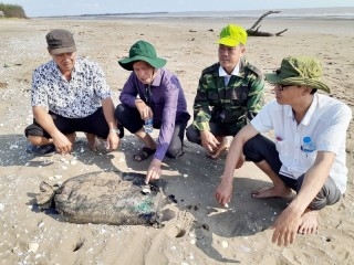 Xử lý bao dầu nhớt trôi dạt vào bãi biển