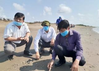 Bờ biển Bình Đại lại xuất hiện chất dầu loang