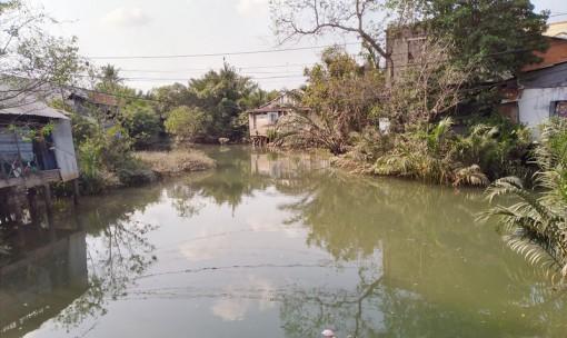 Ô nhiễm môi trường trên rạch Cái Cá