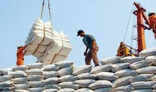 Thanh tra việc chấp hành quy định về xuất khẩu gạo