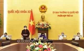 Ủy ban Thường vụ Quốc hội cho ý kiến về dự án Luật Thỏa thuận quốc tế