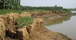 Quản lý đất bãi bồi ven sông, rạch và đảm bảo an toàn giao thông thủy