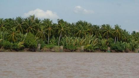 Cho phép xả thải vào nguồn nước trên sông Hàm Luông